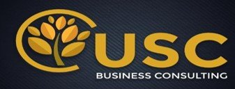 usc business consulting